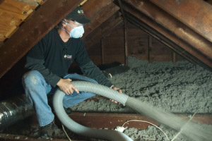 Blown Insulation in Lake Zurich