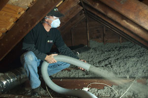 Cellulose Insulation in Buffalo Grove, IL home