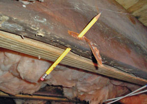 Destroyed crawl space structural wood in Wheeling